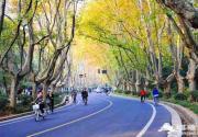 北京最美的春天,在昌平这7条公路上