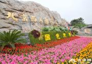 2016年北京西山国家森林公园第三届牡丹文化节