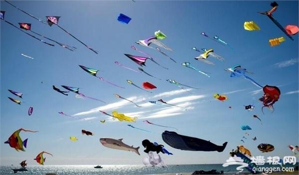 2016金石滩国际风筝节