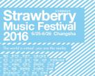 2016长沙草莓音乐节全名单正式曝光 25日开启