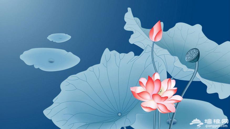 2016河北正定首届荷花节开幕 为期十六天[墙根网]