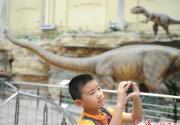 """北京自然博物馆""""亚洲之夜""""8月5日起演五晚"""