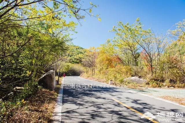 九月别约我 我去京郊最美的原始森林赏秋色了