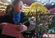 2016北京菊花文化節昨開幕 七大展區各具特色
