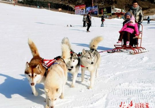 春节期间北京举办380场文艺演出 25场大规模冰雪游艺活动