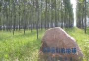 2017北京植树节攻略