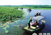 端午全国这些地方味儿最浓 距离北京最近的是白洋淀