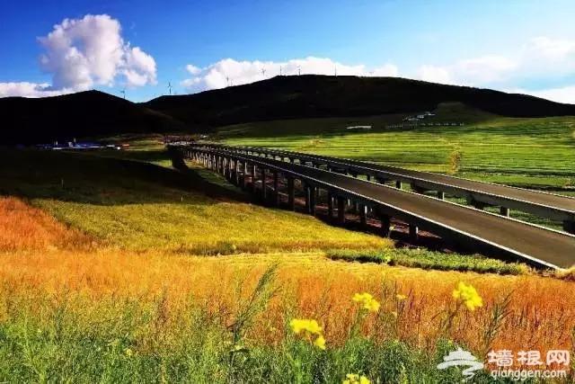 河北除了草原公路,还有七条绝美自驾路线,不可辜负![墙根网]