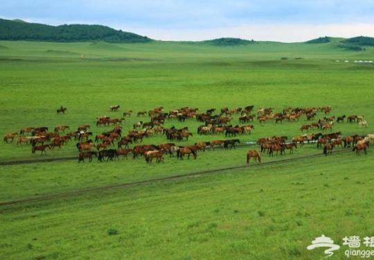 有山有水有花有草的皇家猎场大草原,两日游推荐