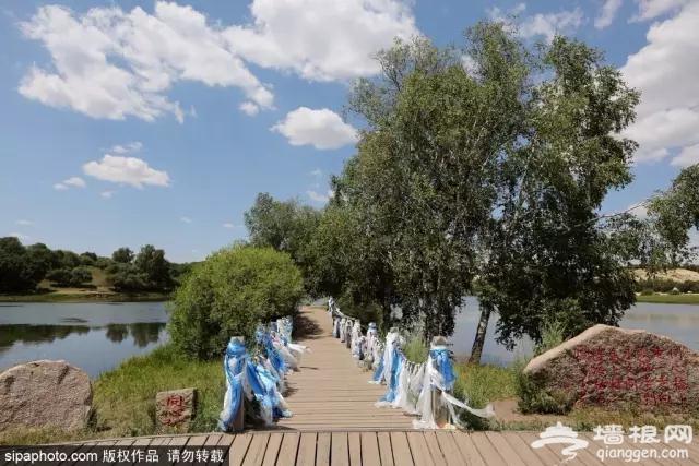 北京周边这条公路838公里,沿途风光美到极致![墙根网]