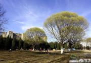 盘点北京中轴线沿途十大高人气旅游景点