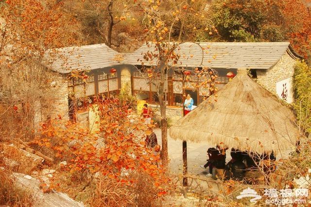 北京周边醉美秋景攻略;不扎堆,景色美[墙根网]