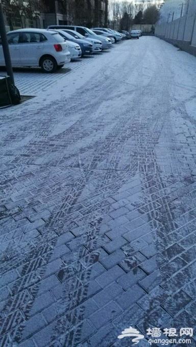 """北京初雪来去匆匆太""""客气"""" 市民拍下的雪景都是这样的(图)[墙根网]"""