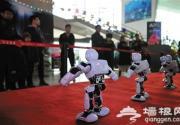 机器人嘉年华百种机器人参展 每场限流600人
