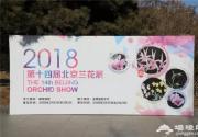 冬去春来 京城花展姹紫嫣红