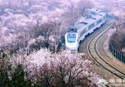 开往春天的列车 北京出发六元赏尽春花美景
