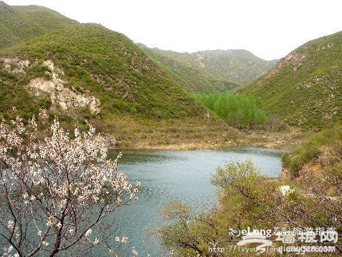人间三月天 北京昌平这些地方适合赏花