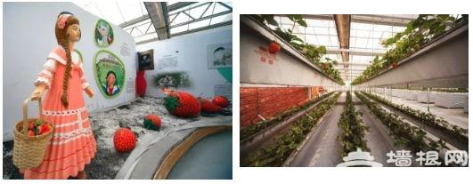 2018第六届北京农业嘉年华开幕[墙根网]