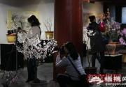2018第十一屆北京明城墻梅花文化節開幕