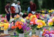 清明期间北京将开通12条临时扫墓专线 部分本周六开始运营