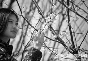 京东最大樱花园早樱盛放 玉渊潭樱花有望下周报春