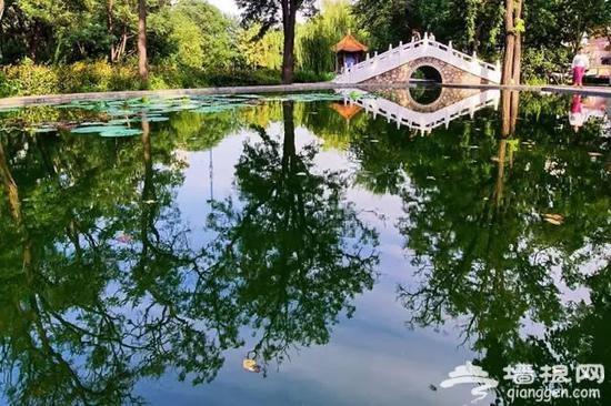 唐山南湖景区就要免费开放啦 已购年票可以退票[墙根网]
