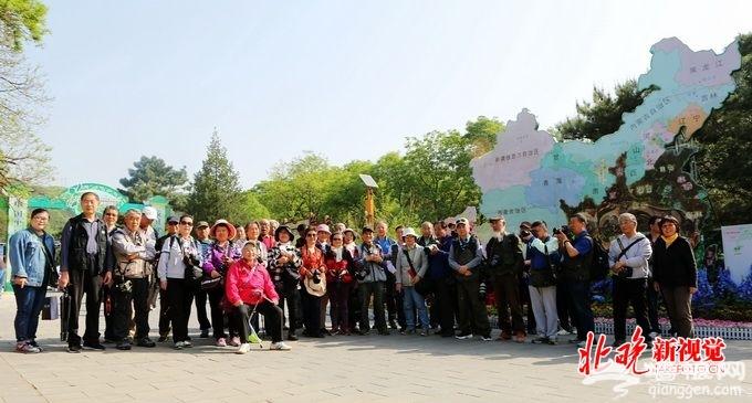 北京八大处茶文化节开幕:五一期间多场活动邀您品鉴安化黑茶[墙根网]