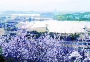 APEC怀柔会址最佳观览点建成