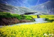 西藏比318国道更惊艳的公路,堪称史上颜值最高!
