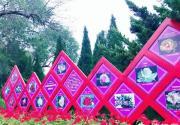 2018第十届北京月季文化节 世界花卉大观园名品月季花展开幕