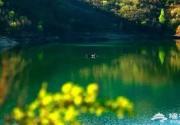 北京周边最值得去的8个绝美天堂!美炸了!
