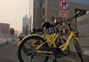 北京一卡通可刷ofo小黄车了 首批新车在人民大学校园内开始路测