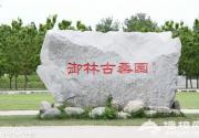 京南将建古桑国家森林公园