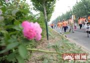 """第三届北京""""花马""""大兴开跑共吸引3000人参与"""
