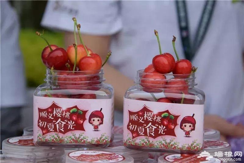 第三届北京顺义樱桃采摘旅游文化节开幕式进入倒计时