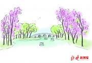 六一儿童节北京公园推出多项特色活动 玉渊潭举办鲁冰花花展