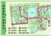 2018圆明园荷花节今日开幕