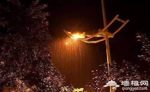 自驾游必看!雨天出行小贴士,关键时刻能救命[墙根网]