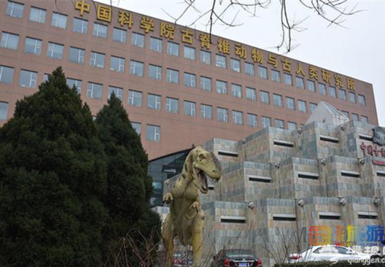 中国古动物馆,小朋友的心中恐龙世界