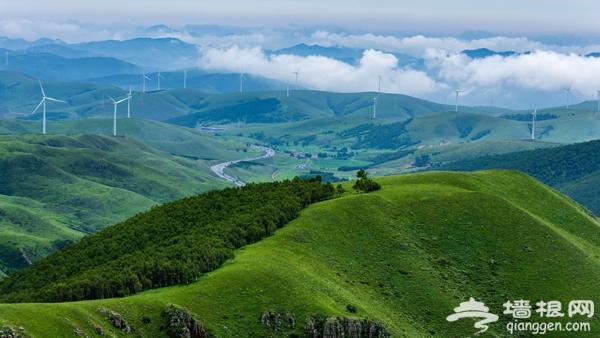 一路看尽坝上景 丰宁京北第一天路