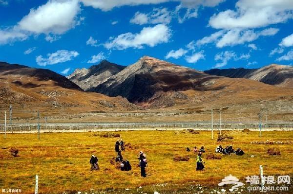 在西藏不能随意洗澡,是有原因的!
