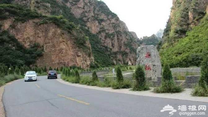 """一秒春天!北京隔壁私藏的""""空中花园"""",一到8月美成童话!还要错过吗?[墙根网]"""
