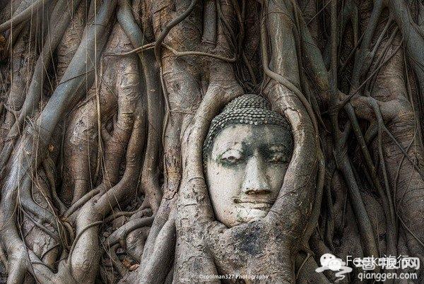 第一次出国游 为什么建议去泰国?[墙根网]
