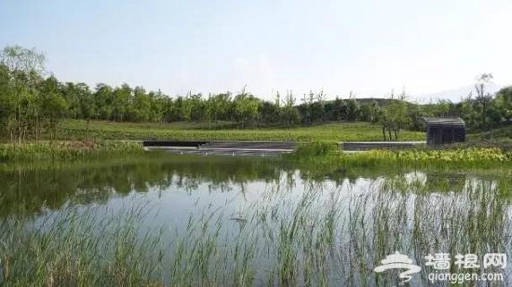 北京最神秘的免费公园,生态原始、野趣横生!