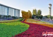 中非合作论坛期间北京多条公交线路甩站 开通7条地铁免费摆渡专线
