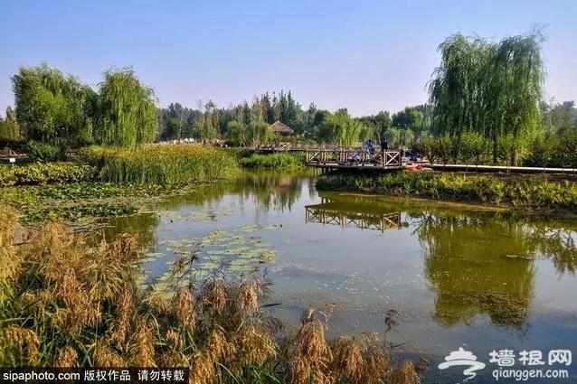 9月京郊最美旅行地!来一场说走就走的旅行,约吗?[墙根网]