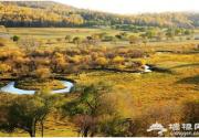 京郊湿地公园玩腻了,快来河北湿地看看吧!