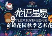 浦江郊野公园奇迹花园秋季艺术花展等你来 体验森林花海