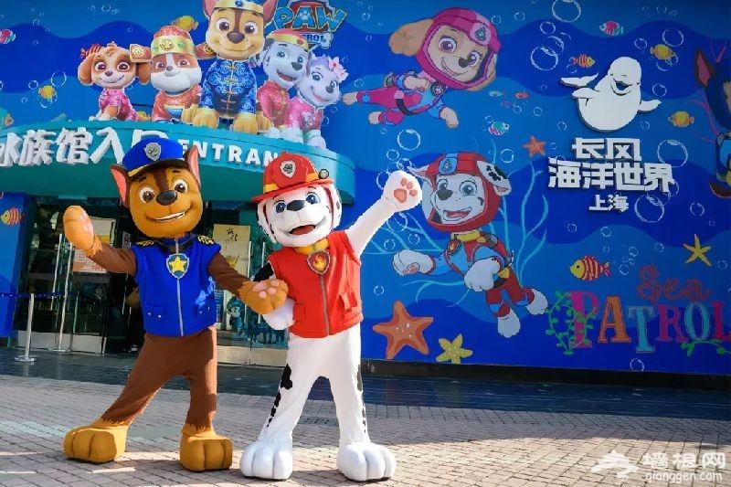 2018上海旅游购物节9月15日开幕 普陀区精彩活动盘点[墙根网]