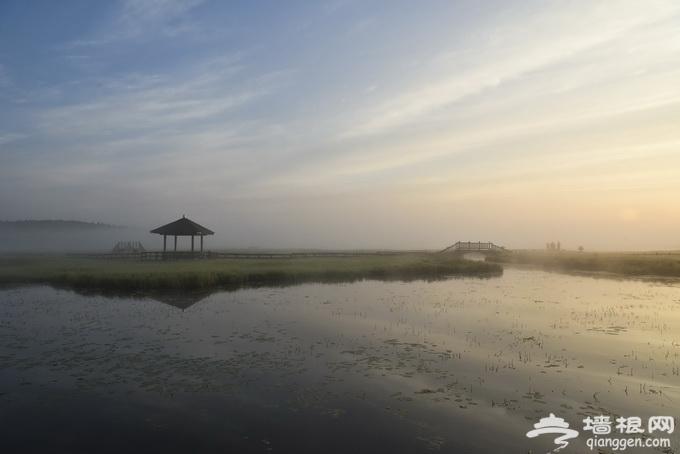 塞罕坝:离北京最近的草原 相机也无法记录它的美[墙根网]